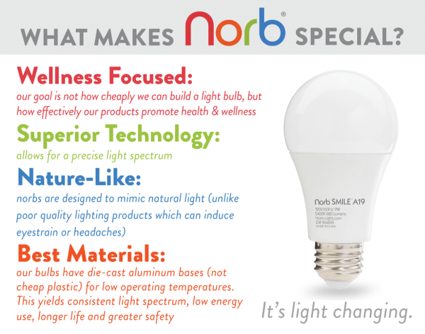 Graphic about what makes Norb lights special