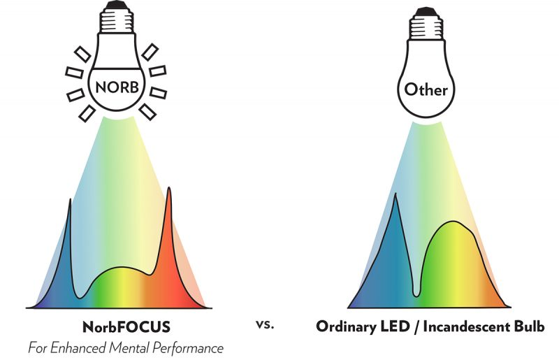 NorbFOCUS spectrum compared to ordinary LED and incandescent bulb