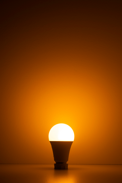 NorbBUG LITE is an amber-colored LED that leaves out the wavelengths of light that attracts pesky bugs.