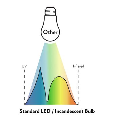 Standard LED or Incandescent bulb light spectrum