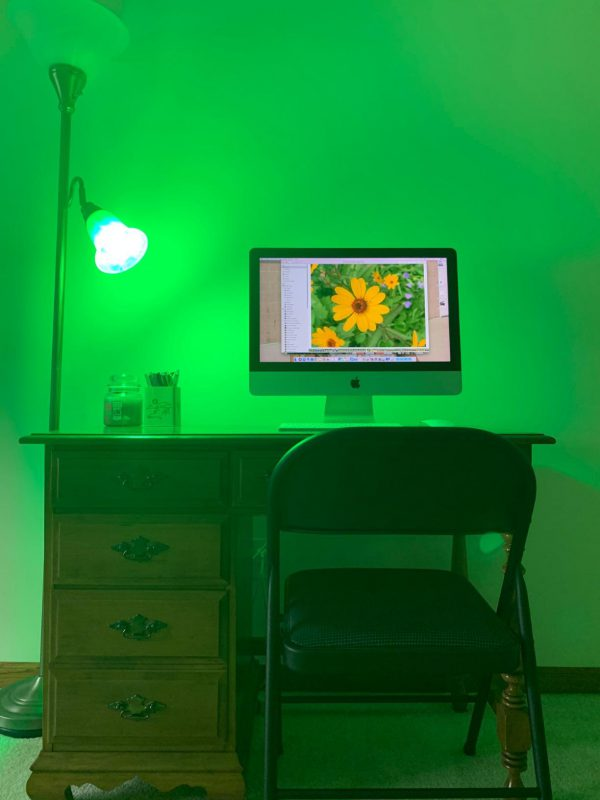Computer desk and chair being illuminated by narrow-band green NorbRELIEF light