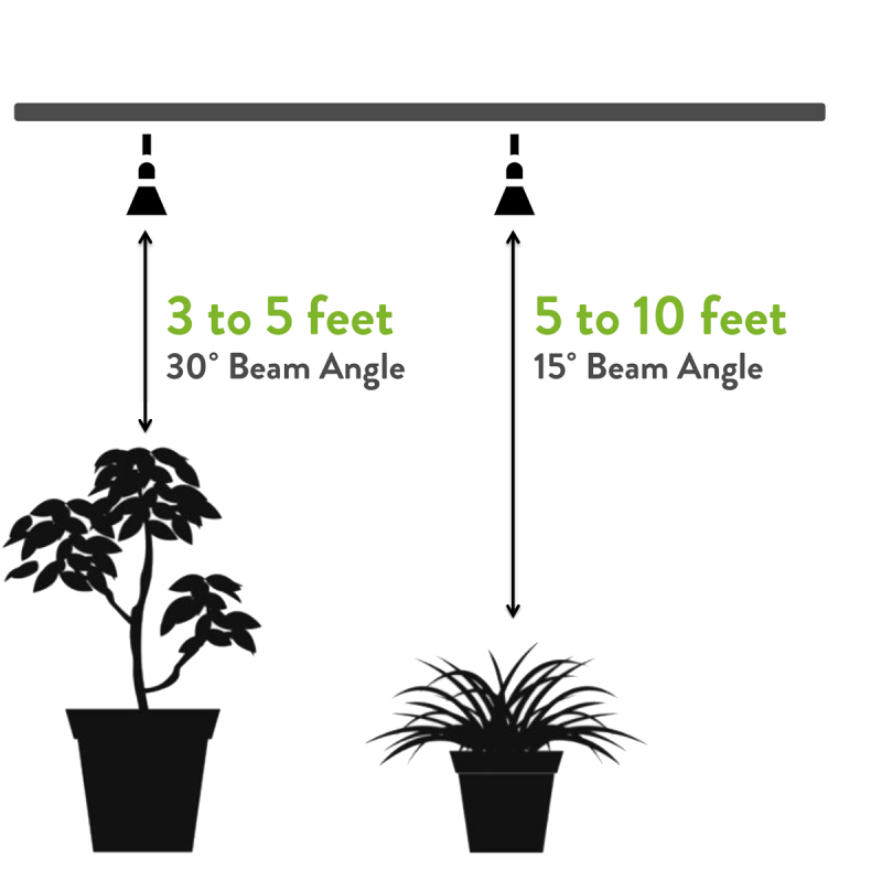 Use the 30 degree beam angle to illuminate plants that are 3 to 5 feet from the lamp. Use the 15 degree beam angle to light plants that are 5 to 10 feet from the lamp.